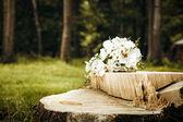 Csokor fehér rózsát, erdőben, fák és a zöld fű