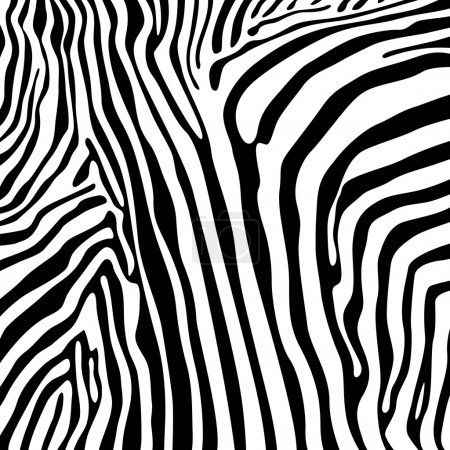 Illustration for Zebra textures - Royalty Free Image