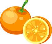 Illustration Orange on White background