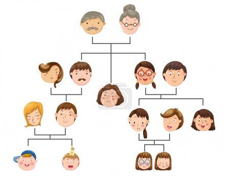 Illustration pour Illustration concept arbre généalogique - image libre de droit