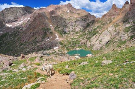 San Juan Mountains Colorado, Rocky Mountains, USA