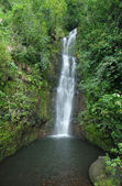 Remote waterfall in rainforest, Hawaii