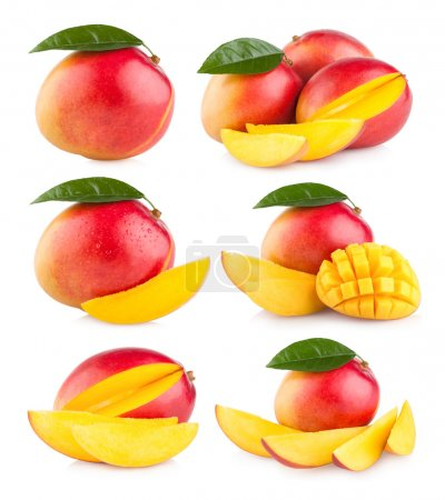 Collection of 6 mango
