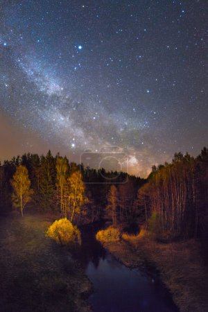 Photo for Starry night over a small forest river - Royalty Free Image