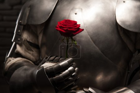 Knight in armor holding red rose