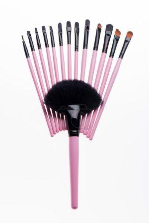 Set of  professional  pink make-up brushes isolated on white bac