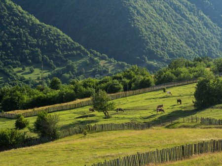 Svaneti region in Georgia, Caucasus