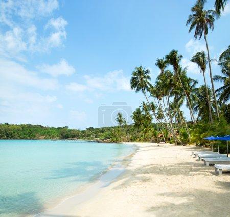 Foto de Hermosa playa y mar tropical - Imagen libre de derechos