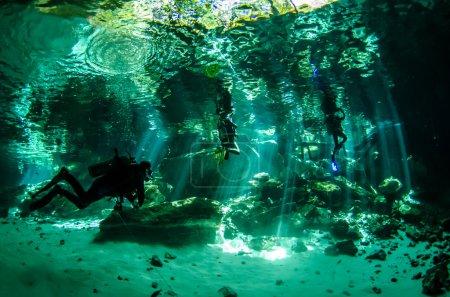 Photo pour Les cenotes d'eau douce de la péninsule du Yucatan, puits de la jungle. Célèbre parmi les plongeurs . - image libre de droit