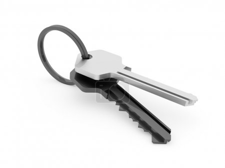 Two keys rendered and isolated on white