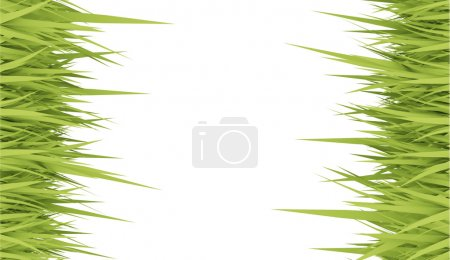 Photo for Grass concept card rendered on white - Royalty Free Image
