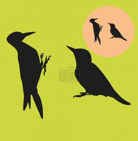 Woodpeckers silhouettes