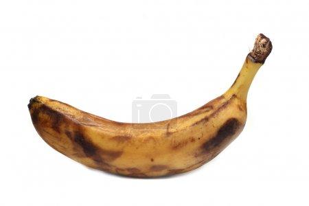 Foto de Plátano podrido viejo sobre un fondo blanco - Imagen libre de derechos