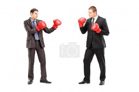 Photo for Full length portrait of two businessmen having a fight with boxing gloves, isolated on white background - Royalty Free Image
