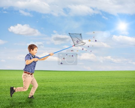 Child catching butterflies on field