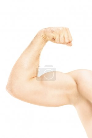 Photo for Male showing his arm muscles isolated on white background - Royalty Free Image