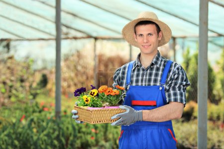 Photo for Male gardener holding flower pots in a garden - Royalty Free Image
