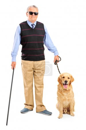 Blind person and dog