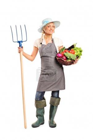 Photo pour Portrait de toute la longueur de l'agricultrice en tenant une fourche et un panier avec les légumes isolés sur fond blanc - image libre de droit
