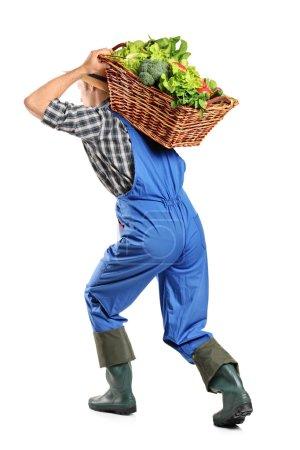 Farmer carrying basket of vegetables
