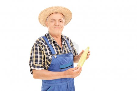 Mature agricultural worker holding corn