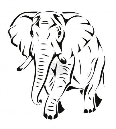 éléphant d'Afrique à pied