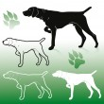 German pointer dog  illustration...