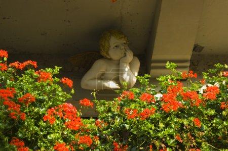 Flowers near cupid statue