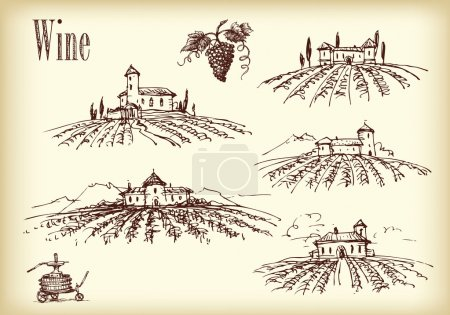 Castles with vineyards