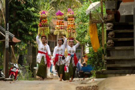 BALI - JANUARY 14: Village women carry offerings of food baskets on their heads in a procession to the village temple in Ubud district on January 14, 2010 in Bali, Indonesia.