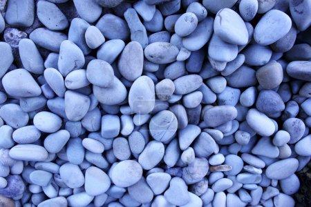 Photo pour Galets bleus sur la plage - image libre de droit