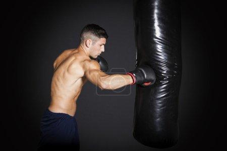 Muscular man training with punching bag at gym