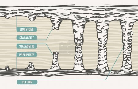 Vector illustration, stalactite, stalagmite, column, text