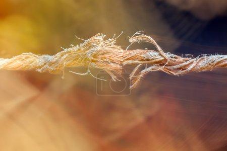 Photo pour Corde coupée et effilochée suspendue par un fil et prête à casser - image libre de droit