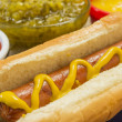 Fresh grilled hot dog with mustard on table with c...