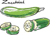 Fresh zucchini courgette whole & sliced