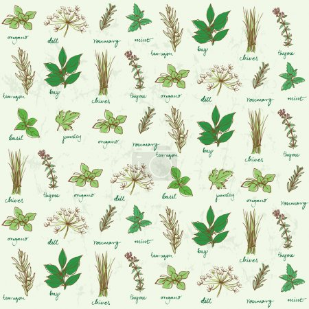 Illustration for Fresh herbs background vector - Royalty Free Image