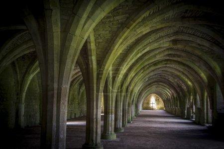 Cellarium  Fountains Abbey
