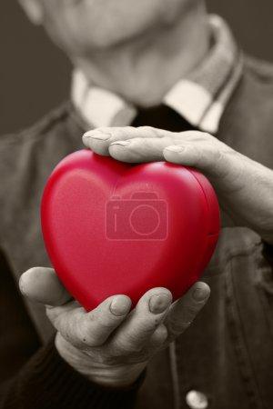 Hands senior, elderly man holding red heart