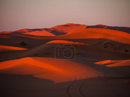 Sand dunes of Erg Chebbi