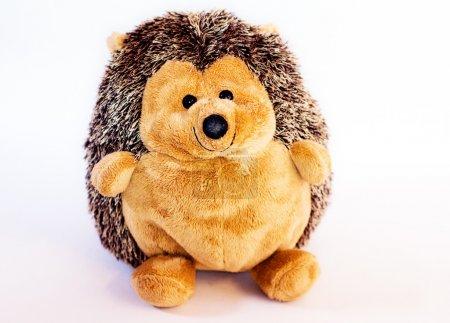 Toy plush hedgehog