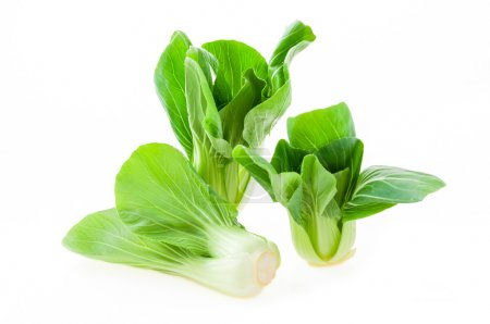 Fresh green bok choy (chinese cabbage) isolated on...