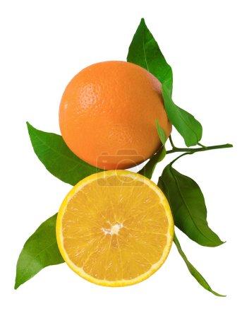 Photo pour Fruits frais d'orange en tranches avec feuilles isolés sur blanc - image libre de droit