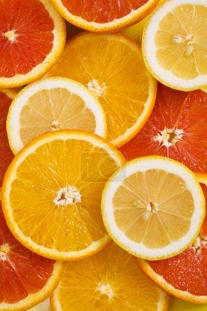 Photo for Orange fruit background with lemon and red orange fruits - Royalty Free Image