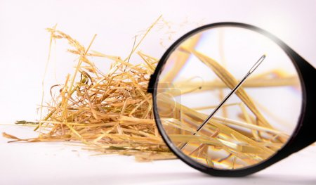 Photo for Needle in haystack with magnifying glass on white background - Royalty Free Image