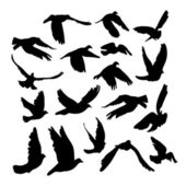 Doves and pigeons set for peace concept and wedding design Flying dove sketch set