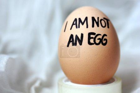I am not an egg: incongruity concept.
