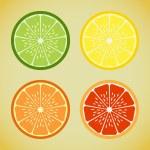 Four slices of citrus, lime, orange, lemon, grapef...
