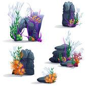 Mořské kameny s řasami