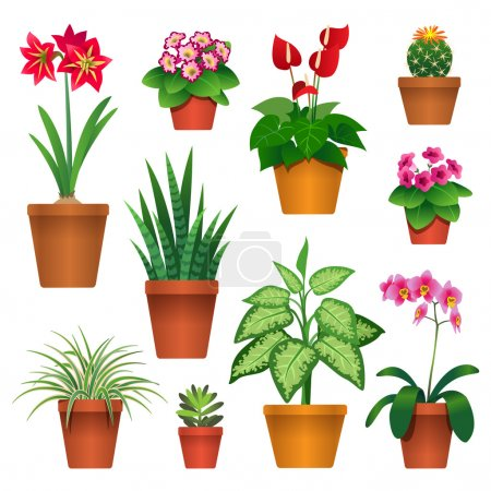 Illustration for Set of houseplants in pots icons isolated on white background - Royalty Free Image
